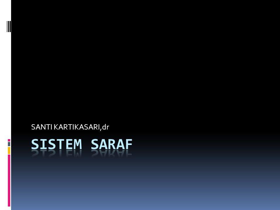 SANTI KARTIKASARI,dr SISTEM SARAF