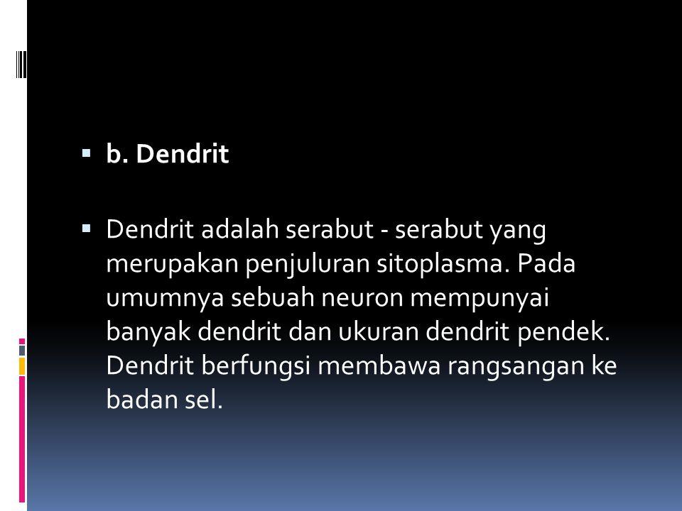 b. Dendrit