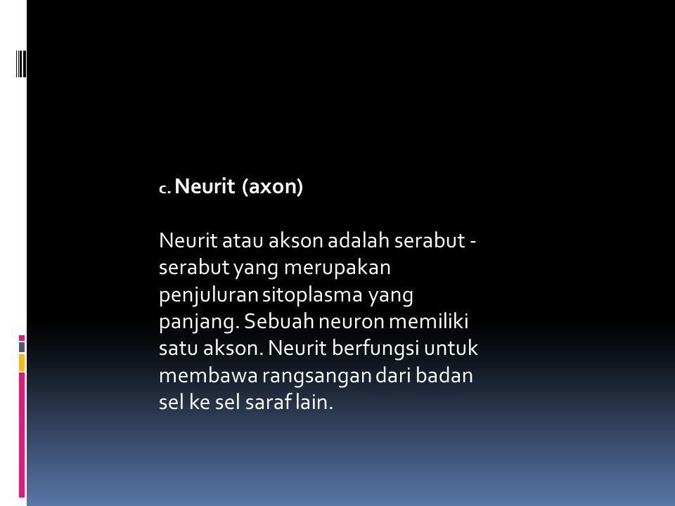 c. Neurit (axon)