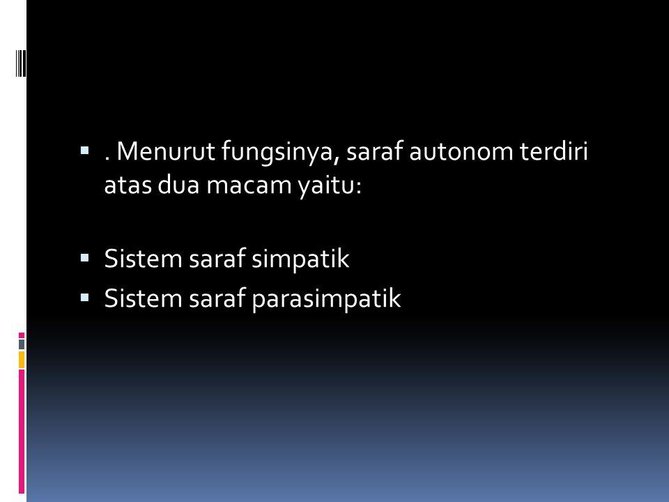 . Menurut fungsinya, saraf autonom terdiri atas dua macam yaitu: