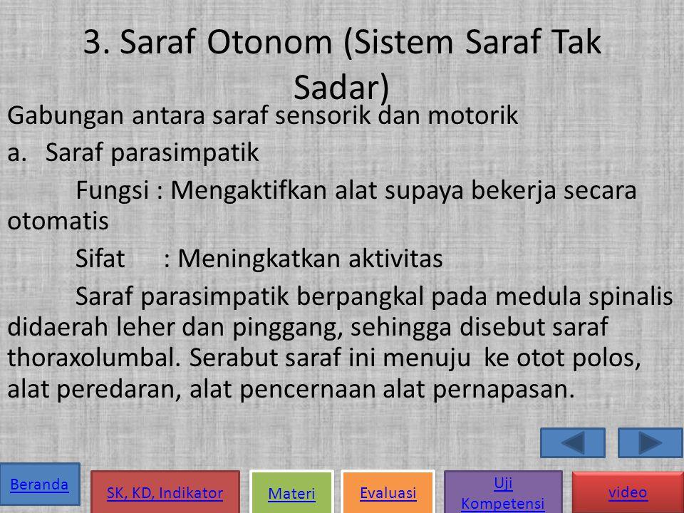 3. Saraf Otonom (Sistem Saraf Tak Sadar)