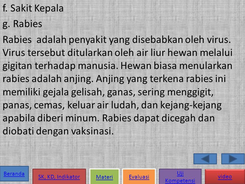 f. Sakit Kepala g. Rabies Rabies adalah penyakit yang disebabkan oleh virus.