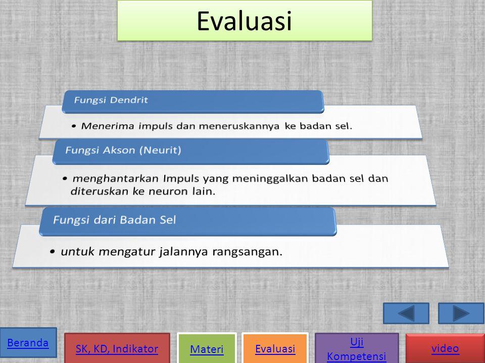 Evaluasi Fungsi Dendrit