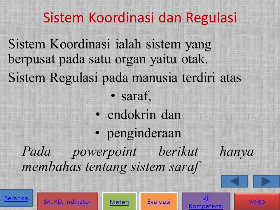 Sistem Koordinasi dan Regulasi