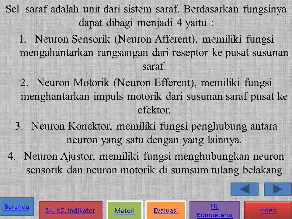 Sel saraf adalah unit dari sistem saraf