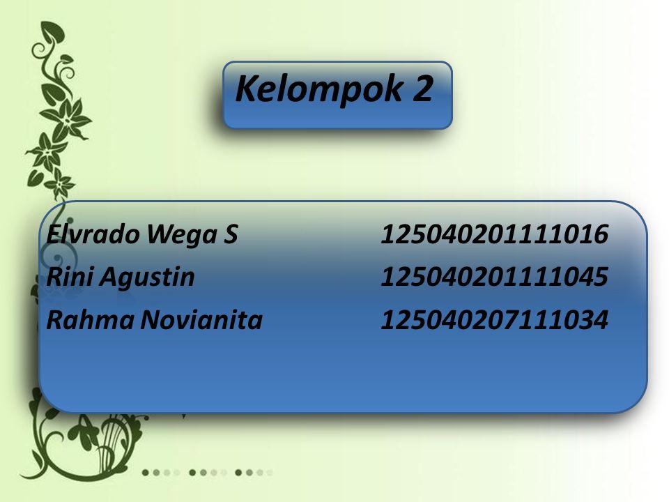 Kelompok 2 Elvrado Wega S 125040201111016 Rini Agustin 125040201111045