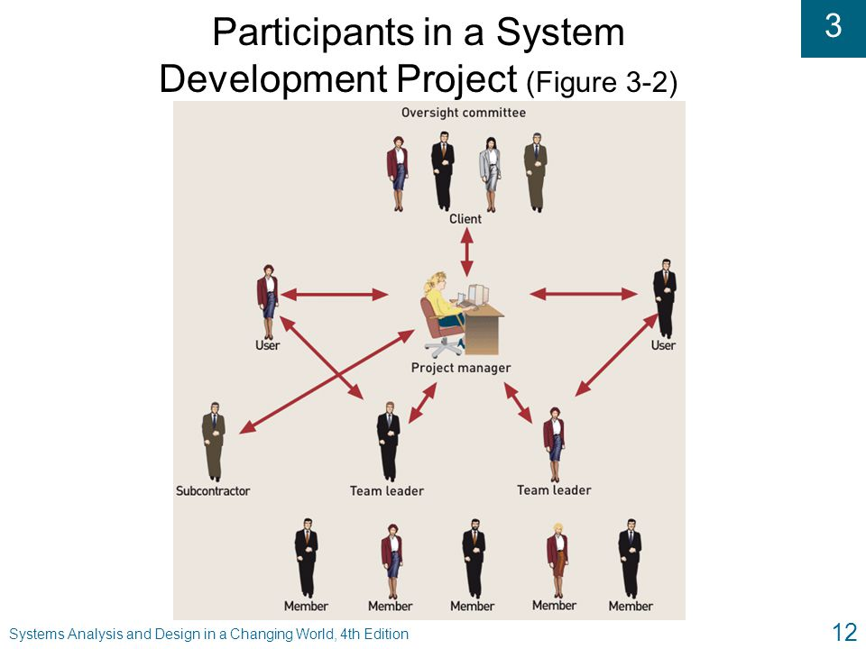Participants in a System Development Project (Figure 3-2)