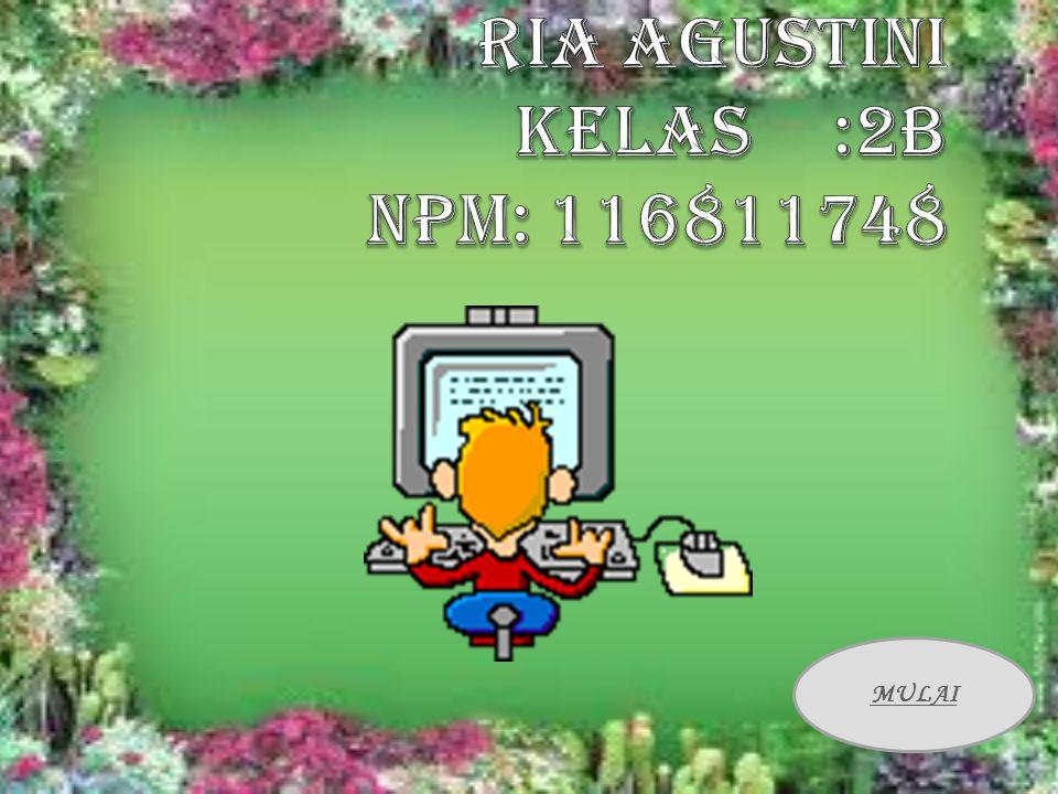 riA AGUSTINI kelas :2b NPM: 116811748