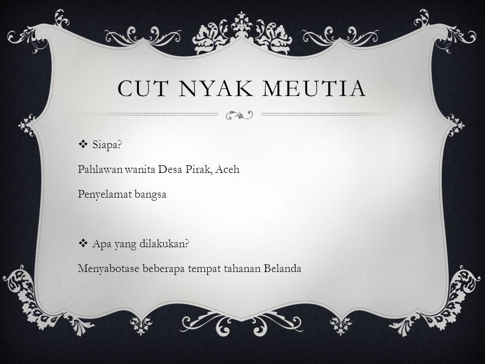 Cut Nyak Meutia Siapa Pahlawan wanita Desa Pirak, Aceh