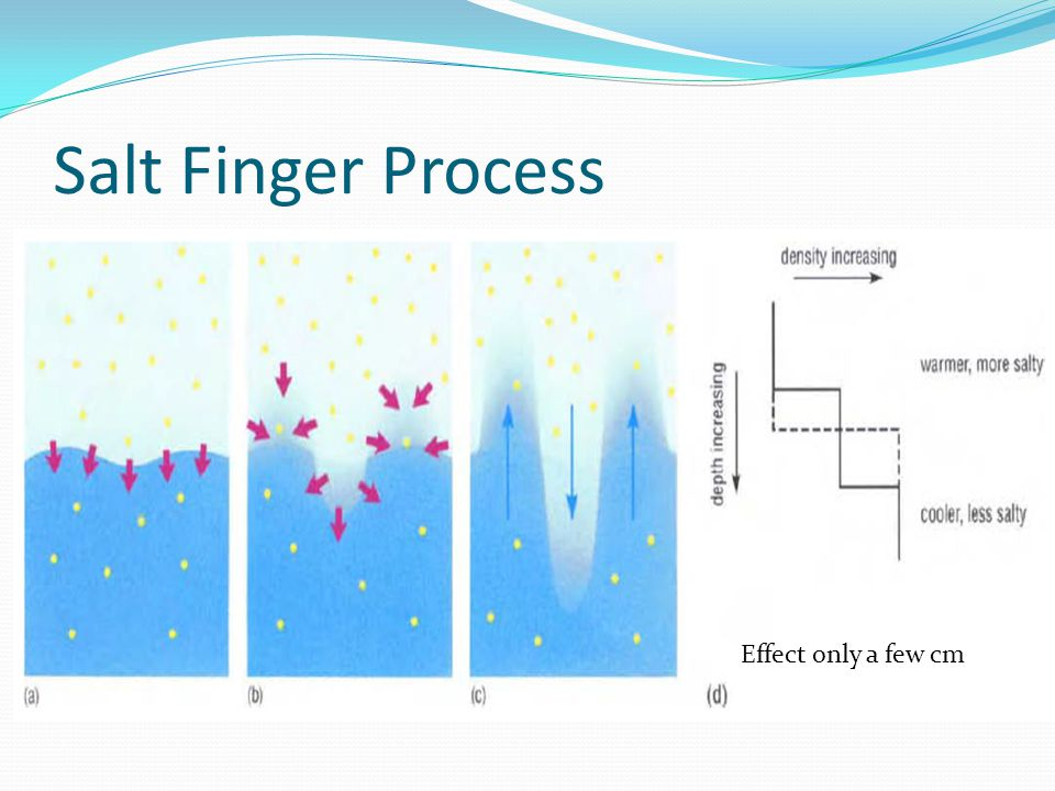 Salt Finger Process Effect only a few cm
