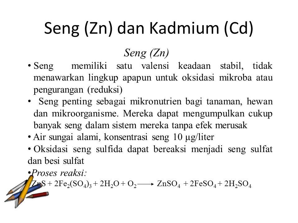 Seng (Zn) dan Kadmium (Cd)