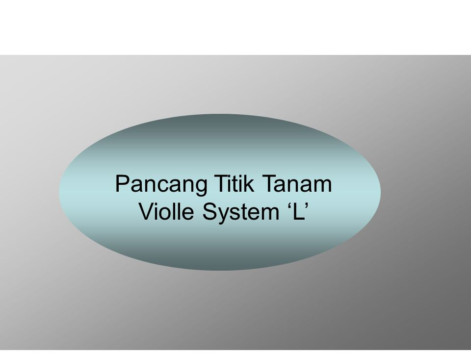 Pancang Titik Tanam Violle System 'L'
