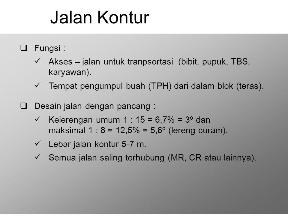 Jalan Kontur Fungsi : Akses – jalan untuk tranpsortasi (bibit, pupuk, TBS, karyawan). Tempat pengumpul buah (TPH) dari dalam blok (teras).