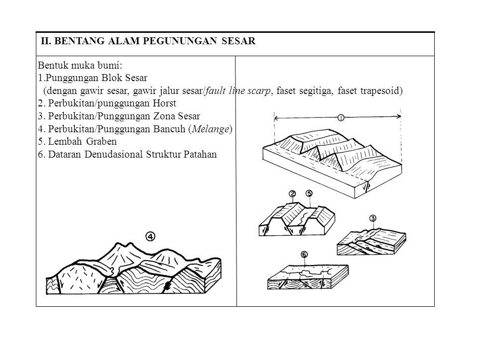 Bentuk muka bumi: Punggungan Blok Sesar. (dengan gawir sesar, gawir jalur sesar/fault line scarp, faset segitiga, faset trapesoid)