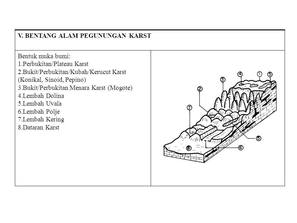Bentuk muka bumi: Perbukitan/Plateau Karst. Bukit/Perbukitan/Kubah/Kerucut Karst (Konikal, Sinoid, Pepino)
