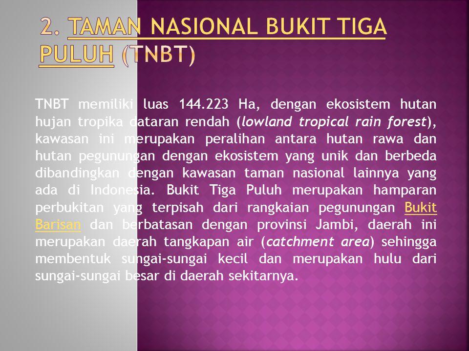 2. Taman Nasional Bukit Tiga Puluh (TNBT)