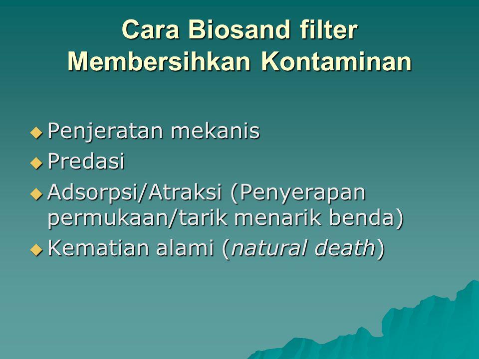 Cara Biosand filter Membersihkan Kontaminan