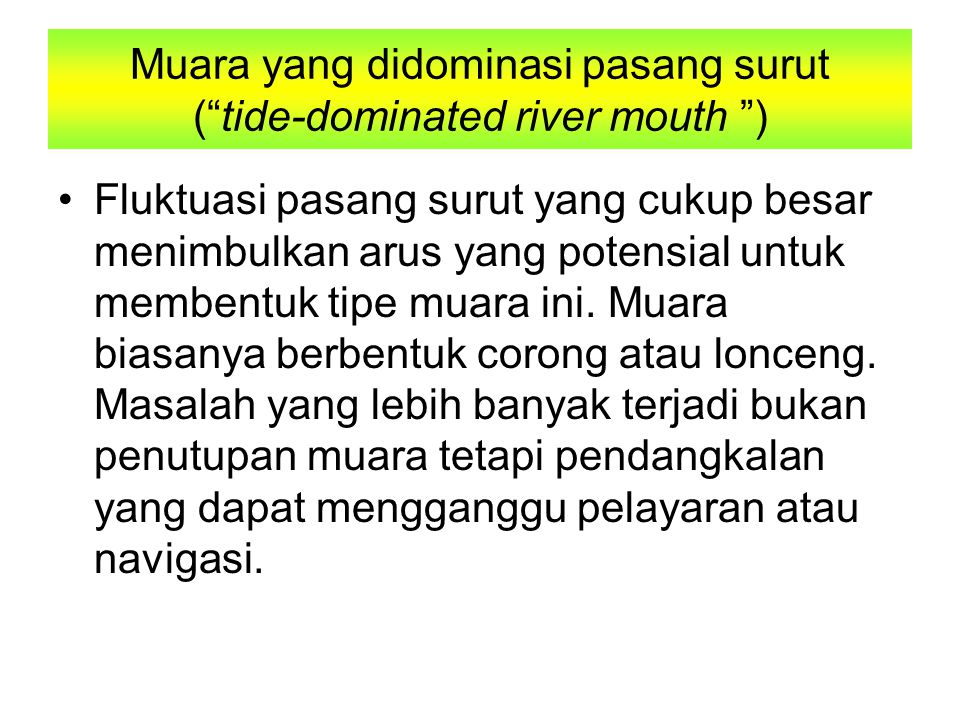 Muara yang didominasi pasang surut ( tide-dominated river mouth )