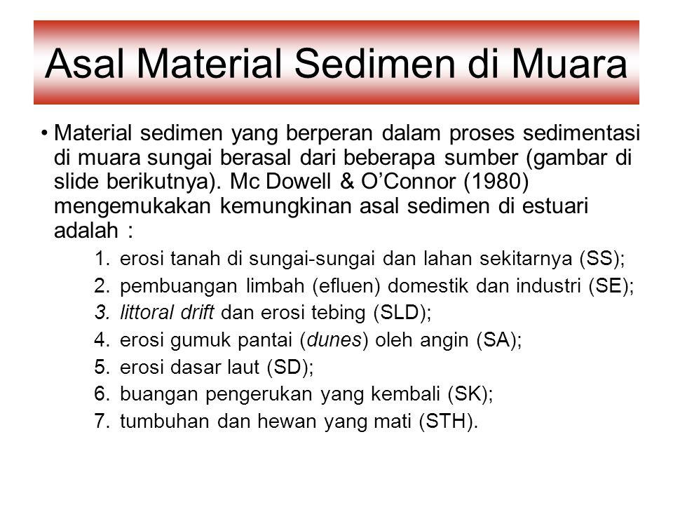 Asal Material Sedimen di Muara
