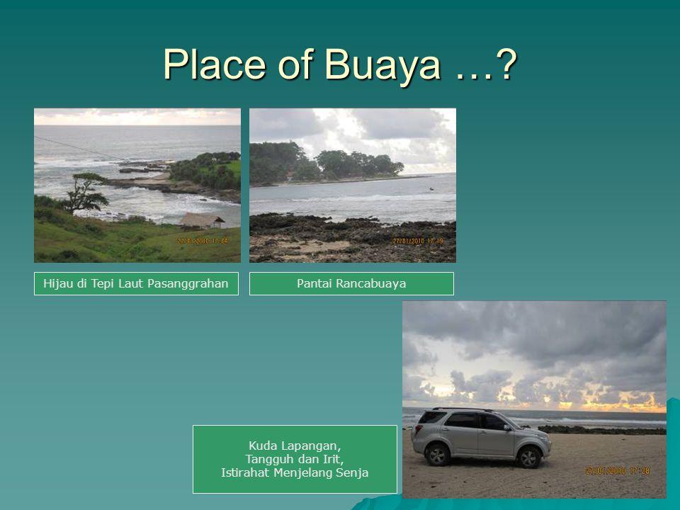 Place of Buaya … Hijau di Tepi Laut Pasanggrahan Pantai Rancabuaya