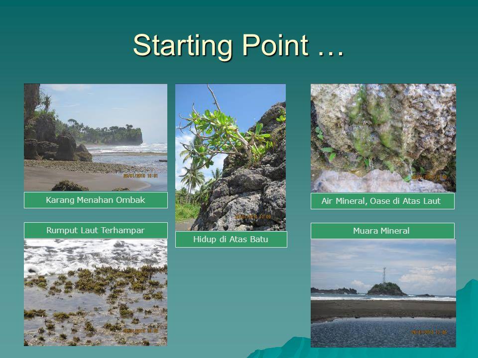 Air Mineral, Oase di Atas Laut