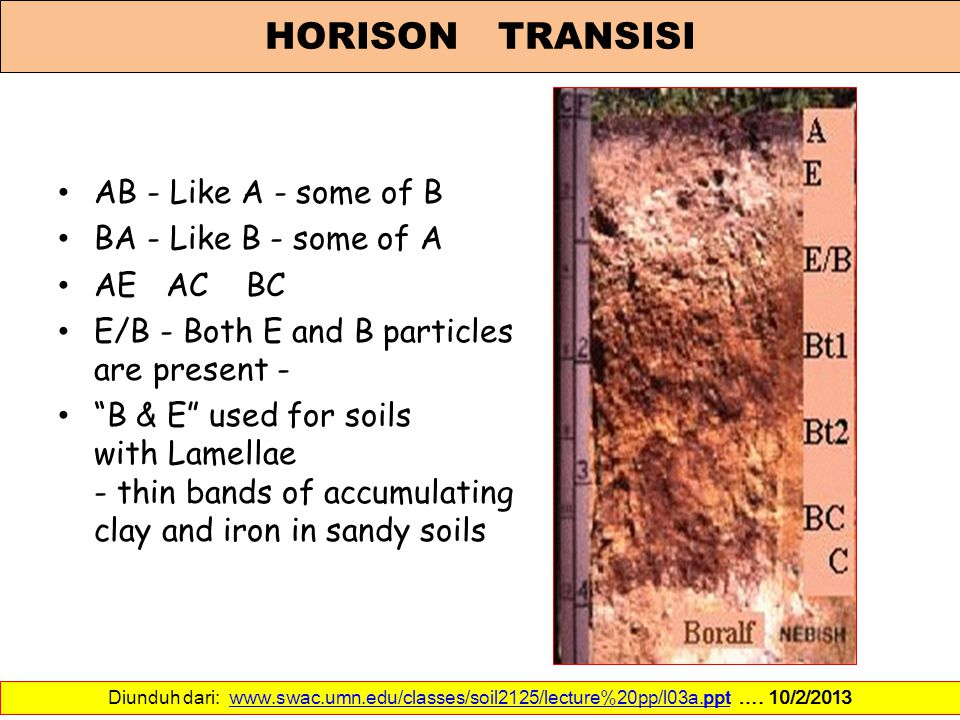 HORISON TRANSISI AB - Like A - some of B BA - Like B - some of A