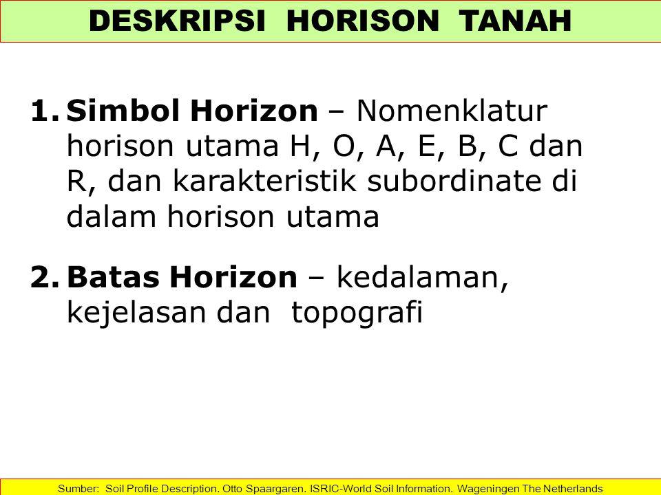 DESKRIPSI HORISON TANAH