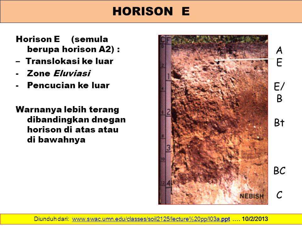 HORISON E A E E/B Bt BC C Horison E (semula berupa horison A2) :