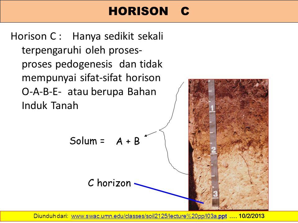 HORISON C