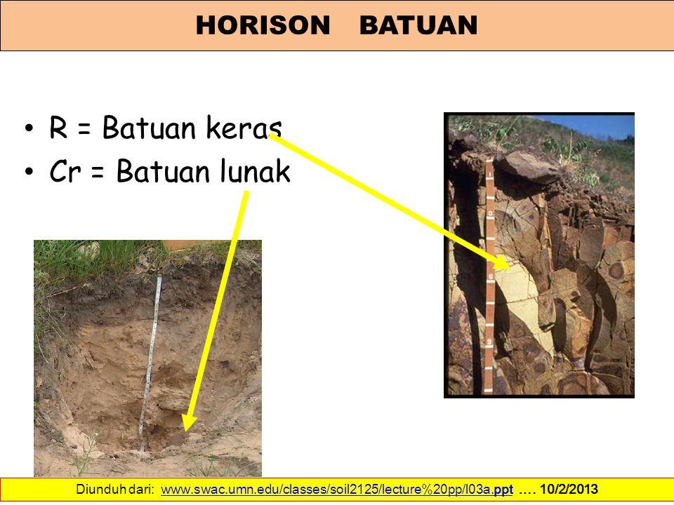 R = Batuan keras Cr = Batuan lunak HORISON BATUAN