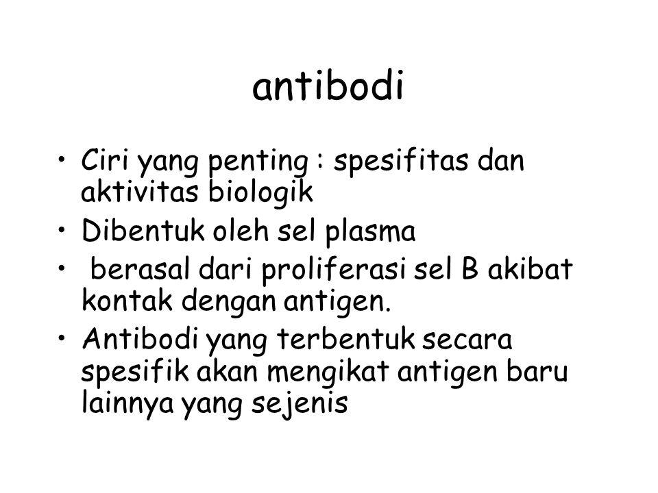 antibodi Ciri yang penting : spesifitas dan aktivitas biologik