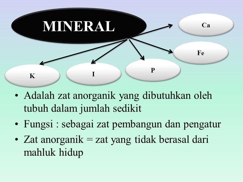 MINERAL Ca. Fe. P. I. K. Adalah zat anorganik yang dibutuhkan oleh tubuh dalam jumlah sedikit.