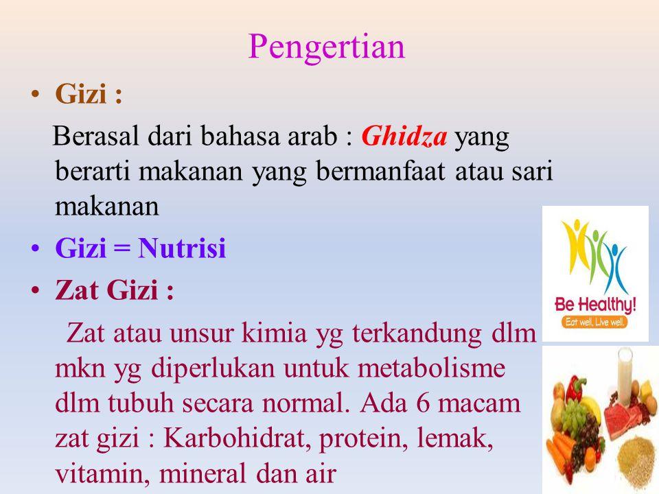 Pengertian Gizi : Berasal dari bahasa arab : Ghidza yang berarti makanan yang bermanfaat atau sari makanan.