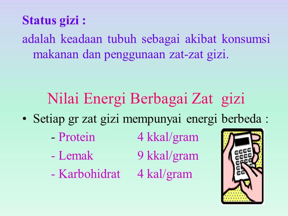 Nilai Energi Berbagai Zat gizi