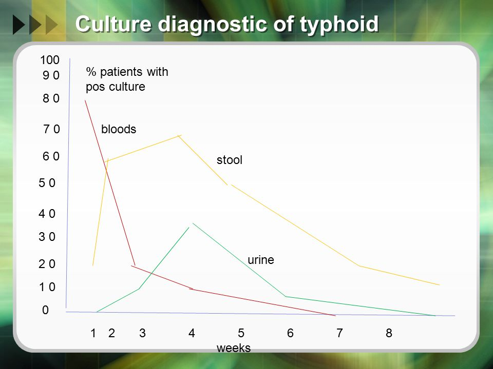 Culture diagnostic of typhoid