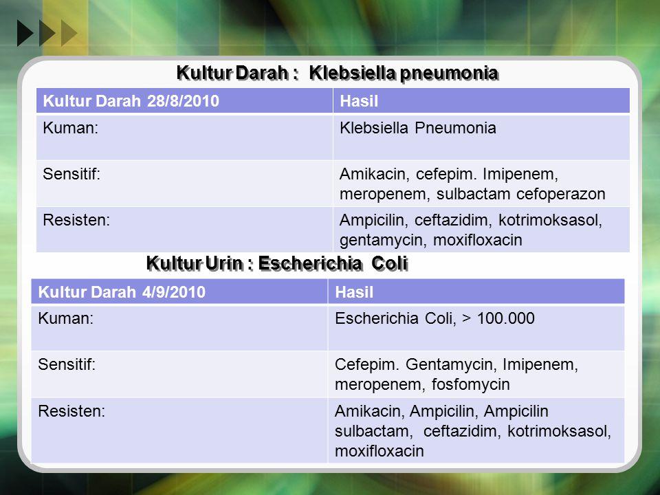 Kultur Darah : Klebsiella pneumonia