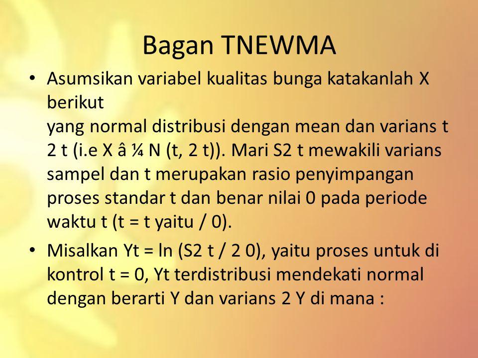Bagan TNEWMA