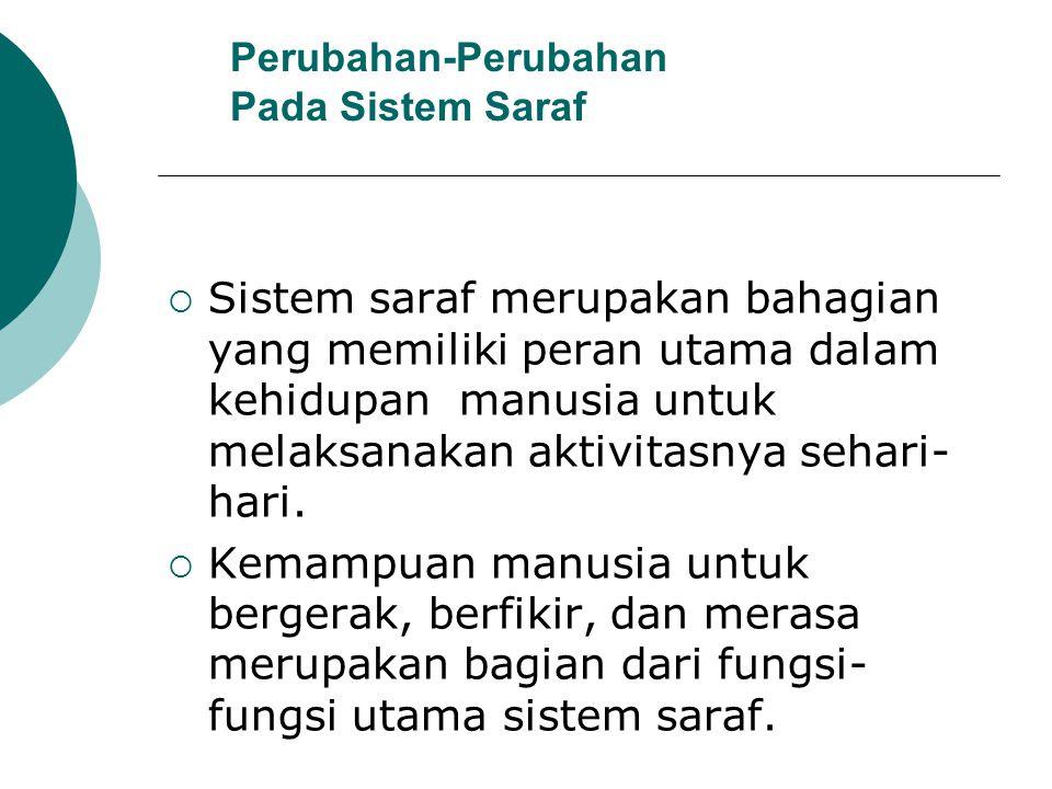 Perubahan-Perubahan Pada Sistem Saraf