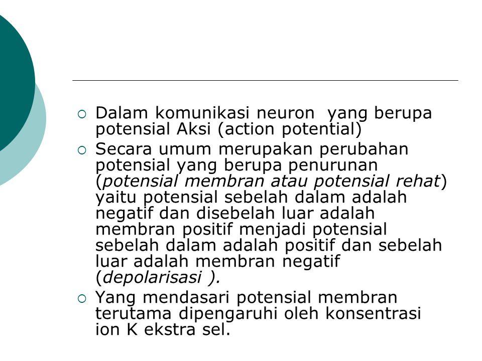 Dalam komunikasi neuron yang berupa potensial Aksi (action potential)