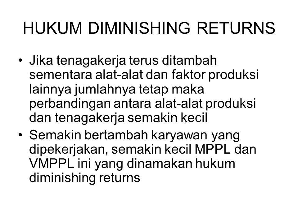 HUKUM DIMINISHING RETURNS
