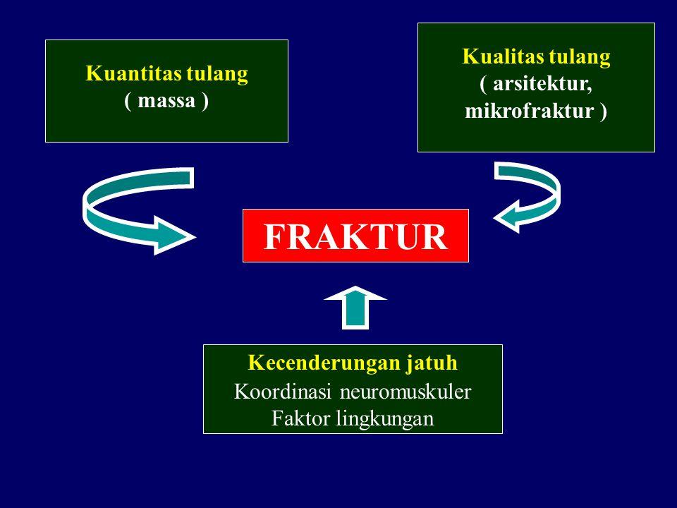 Koordinasi neuromuskuler
