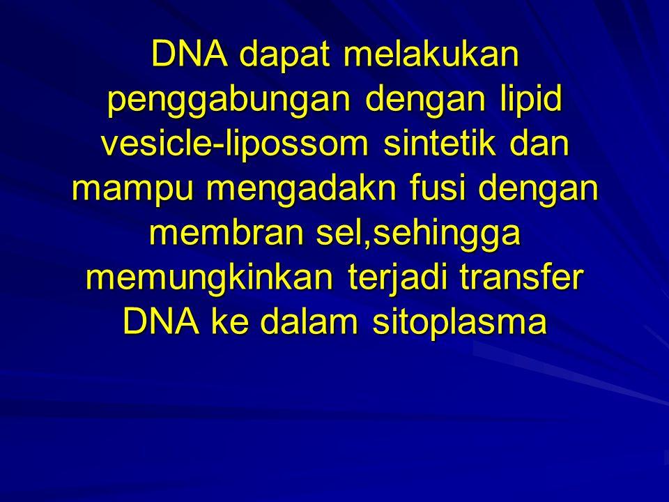DNA dapat melakukan penggabungan dengan lipid vesicle-lipossom sintetik dan mampu mengadakn fusi dengan membran sel,sehingga memungkinkan terjadi transfer DNA ke dalam sitoplasma