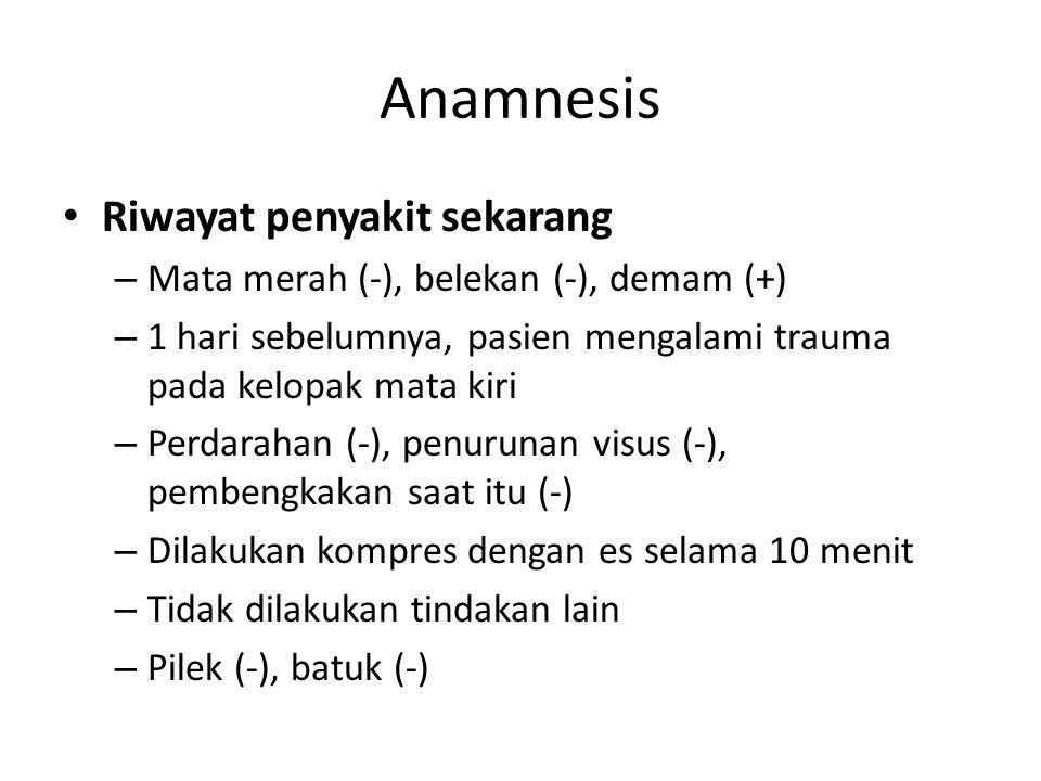 Anamnesis Riwayat penyakit sekarang