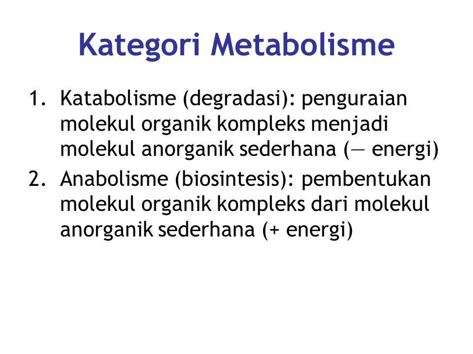 Kategori Metabolisme Katabolisme (degradasi): penguraian molekul organik kompleks menjadi molekul anorganik sederhana (― energi)