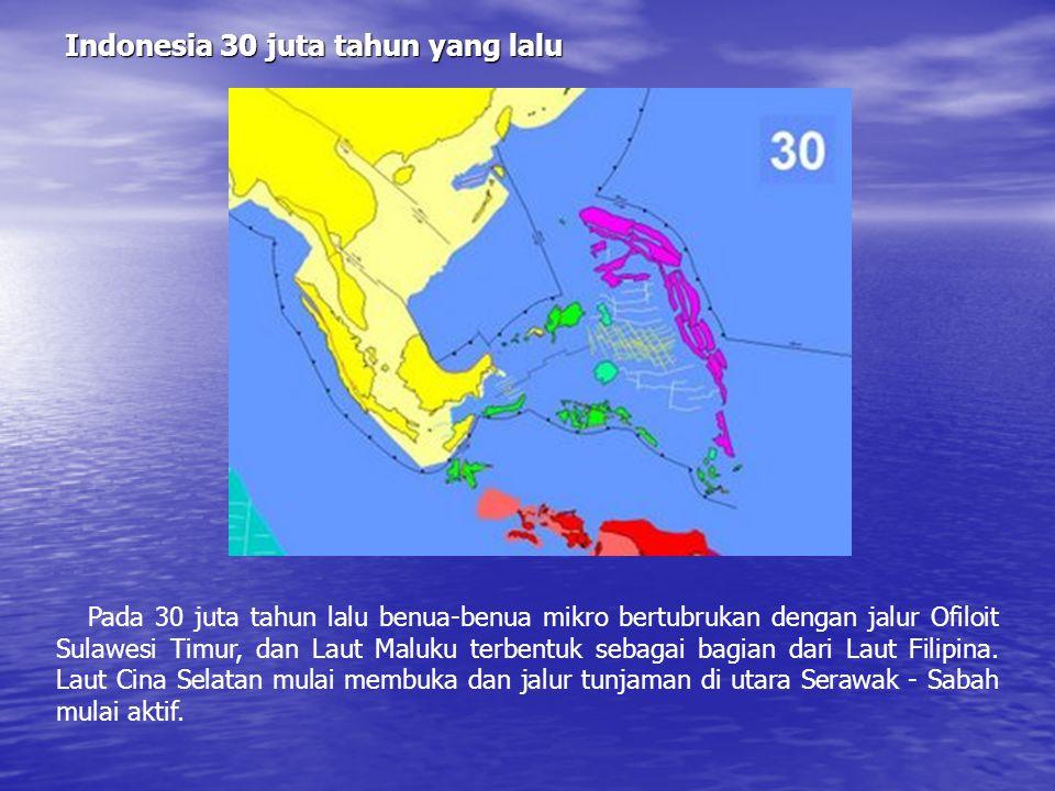Indonesia 30 juta tahun yang lalu
