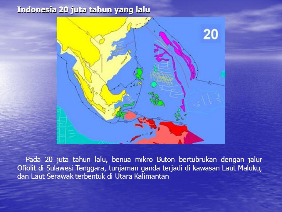 Indonesia 20 juta tahun yang lalu