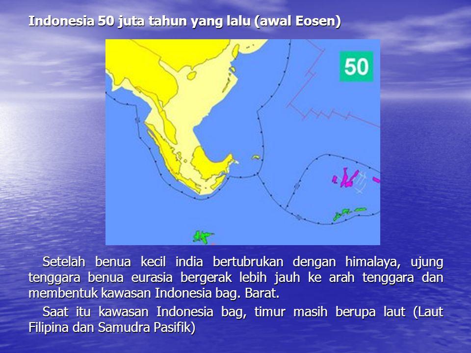 Indonesia 50 juta tahun yang lalu (awal Eosen)