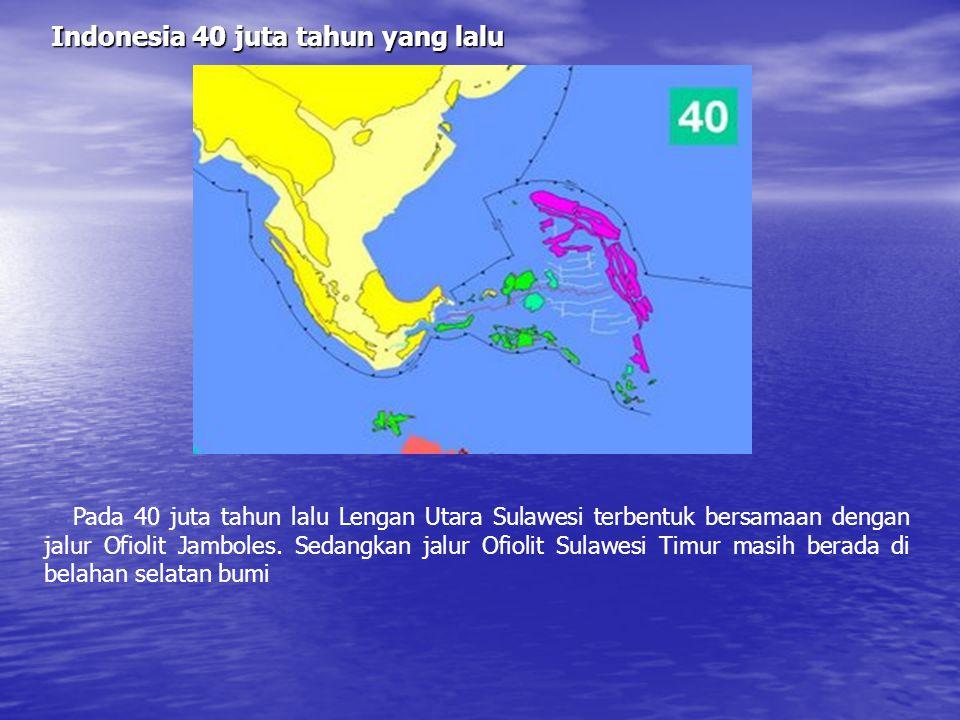 Indonesia 40 juta tahun yang lalu