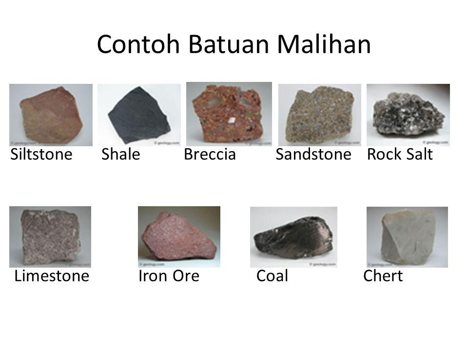 Contoh Batuan Malihan Siltstone Shale Breccia Sandstone Rock Salt