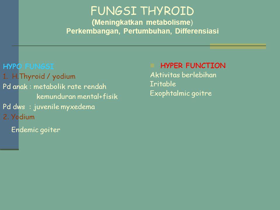 FUNGSI THYROID (Meningkatkan metabolisme) Perkembangan, Pertumbuhan, Differensiasi